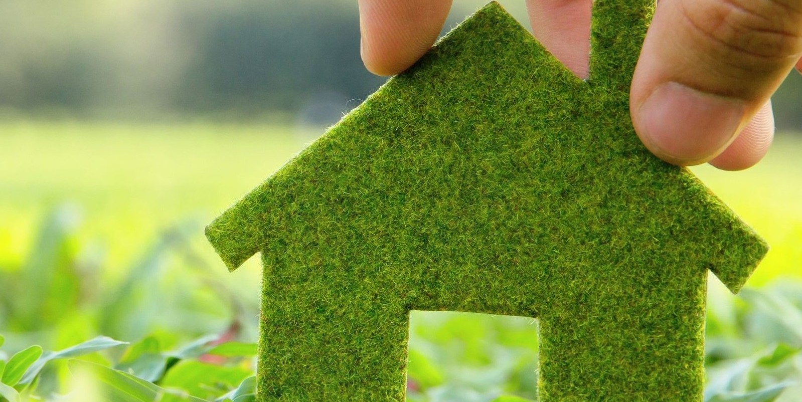 Six Simple Ways To Stop Wasting Energy at Home